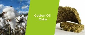 Cotton Oil Cake
