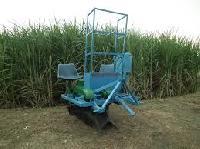 sugarcane planters
