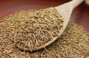 Cheap Quality Cumin Seeds, Ajwain Seeds, Mustard Seeds, Star Anise Seeds, Coriander Seeds