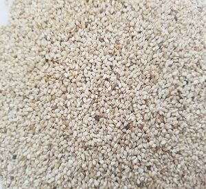 USA Sesame Seeds,Sesame Seeds from America Manufacturers and Suppliers