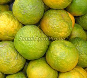Indian Oranges