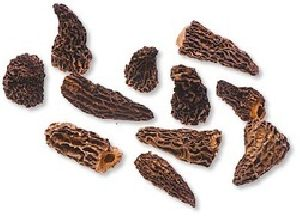 Dried Morels Dry Wild Black Mushrooms