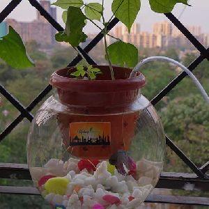 Aquaponica Deep Water Culture Bowl