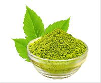 Herbal Color