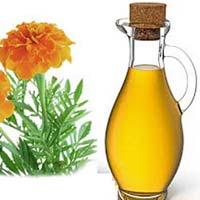 Tagete  Oil