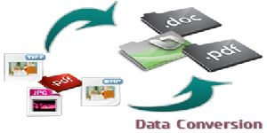 data conversion service