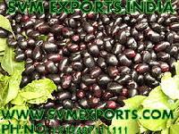 Syzygium Cumini Seeds Exporters