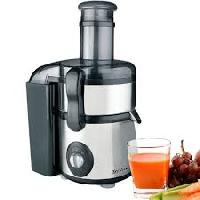 Fruit Juice Extractor Machine