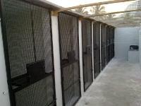Aviary Design Services