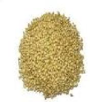 Pgp Quality Coriander Seeds