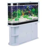 Cover Aquariums