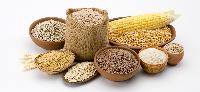 Cereals & Food Grains