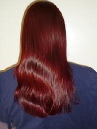 Wine Red Henna