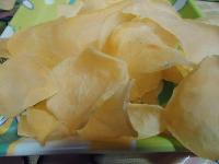 Wafer Chips