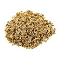 Suwa Seeds