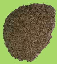 Ajwain Seed   (carawy)