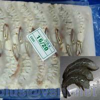 Frozen Hlso Vannamei Shrimps