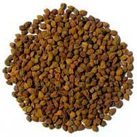 Chana Seeds