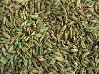 Cumin Seeds, Cumin Powder