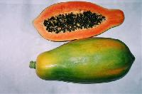 Fruits Seed