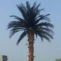 Date Palm Artificial Tree (bt-14)