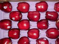 Apple Ffruit