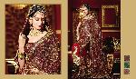 Rich Emroidered Indian Bridal Saree