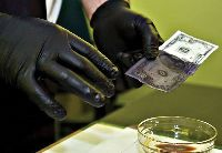 Black Money Cleaning Chemical