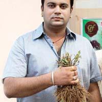 Stevia Planting Material