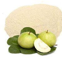 Guava(Psidium guajava) Juice Powder