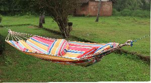 Hammock & Swing Chair