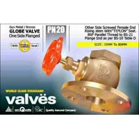 Double Flanged Globe Valve