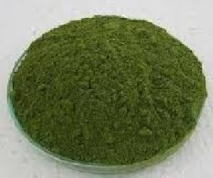 Kasoori Methi Leaf Powder