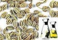 Carom Seeds Oil