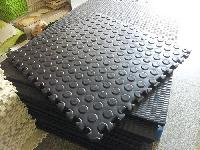 Stable and cow Mat
