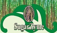 Sugar Enzyme