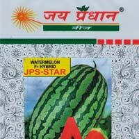 Hybrid Watermelon Seeds