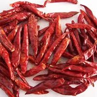 Dry Red Chilli