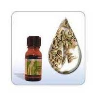 Dill Seed Oil