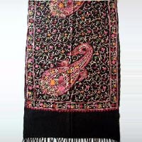 Fashion Embroidery Jaal On Semi Pashmina