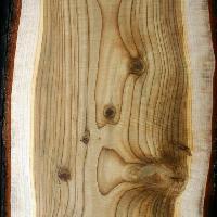 Himalayan Organic Cedar wood