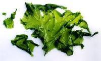 Raw Seaweed