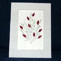 Greeting Cards-02