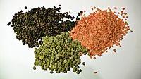 Dal (lentil)