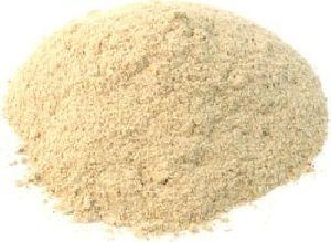 Oyster Dry Mushroom Powder