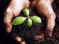 Bio Organics Fertilizer