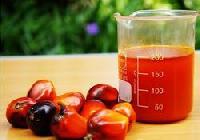 Crude Palm Oil For Biodiesel