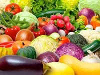 Organic Vegetable Farming Services