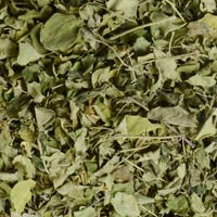Moringa Dried Leaves