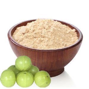 Amla Dry Powder Exporters India